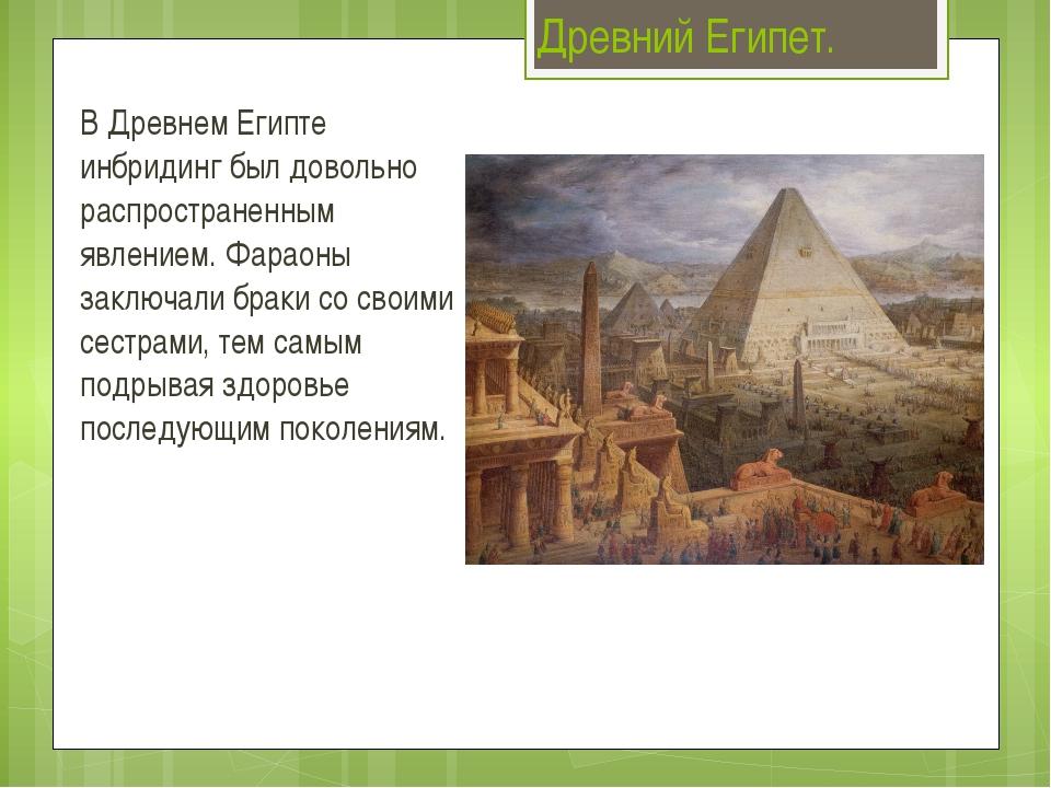 Древний Египет. В Древнем Египте инбридинг был довольно распространенным явле...