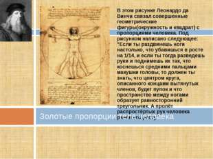 В этом рисунке Леонардо да Винчи связал совершенные геометрические фигуры(окр