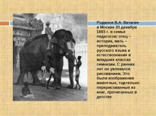 Родился В.А. Ватагин в Москве 20 декабря 1883 г. в семье педагогов: отец – ис