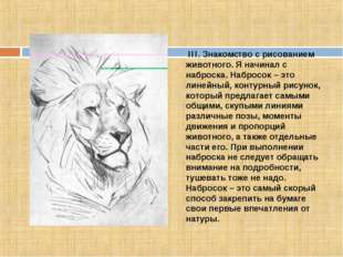 III. Знакомcтво с рисованием животного. Я начинал с наброска. Набросок – это