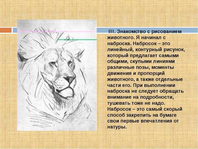 III. Знакомcтво с рисованием животного. Я начинал с наброска. Набросок – это...
