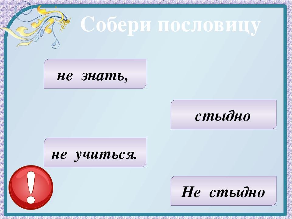 Собери пословицу стыдно Не стыдно не знать, не учиться.