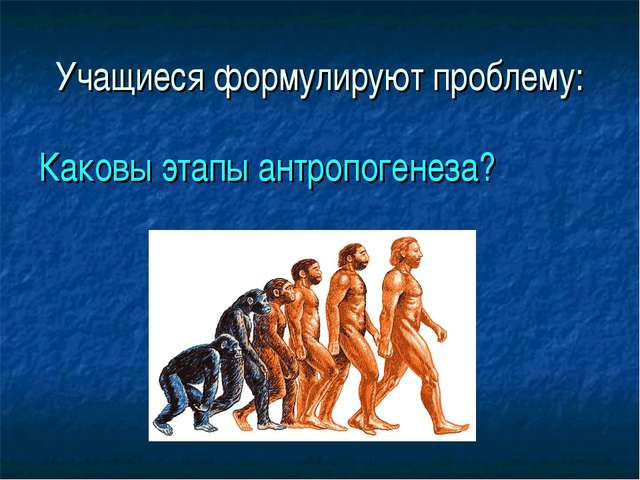 Учащиеся формулируют проблему: Каковы этапы антропогенеза?