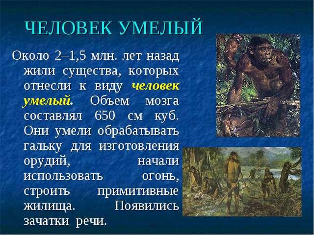 ЧЕЛОВЕК УМЕЛЫЙ Около 2–1,5 млн. лет назад жили существа, которых отнесли к ви...