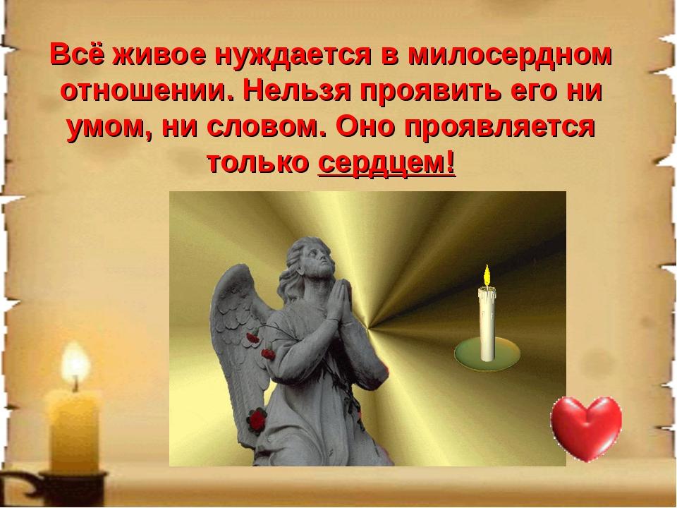 Всё живое нуждается в милосердном отношении. Нельзя проявить его ни умом, ни...