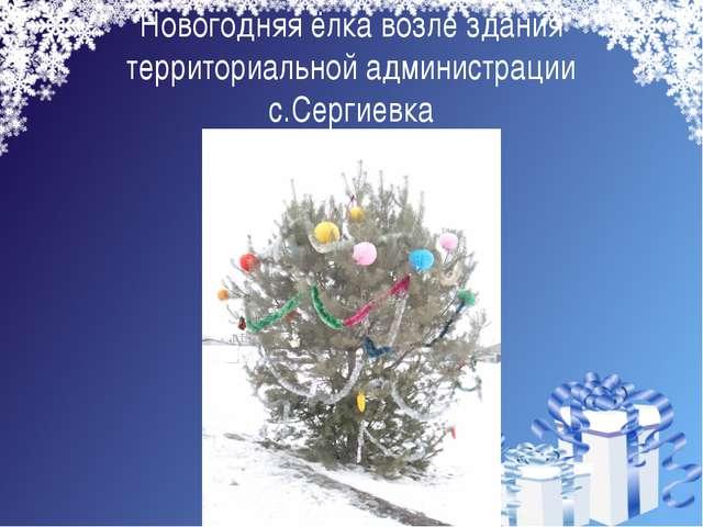 Новогодняя ёлка возле здания территориальной администрации с.Сергиевка