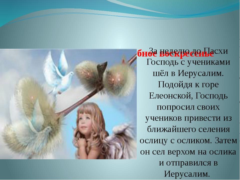 Из истории праздника Вербное воскресенье За неделю до Пасхи Господь с ученика...