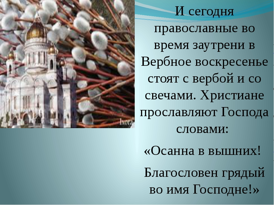 И сегодня православные во время заутрени в Вербное воскресенье стоят с вербой...