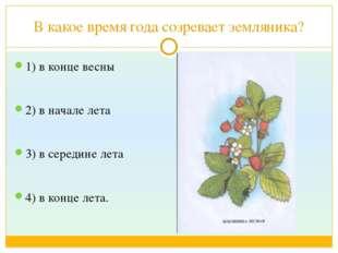 В какое время года созревает земляника? 1) в конце весны 2) в начале лета 3)