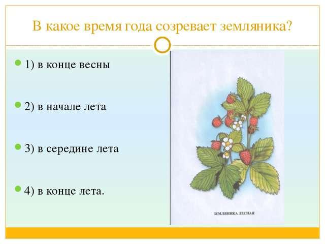 В какое время года созревает земляника? 1) в конце весны 2) в начале лета 3)...