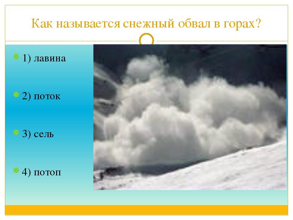 Как называется снежный обвал в горах? 1) лавина 2) поток 3) сель 4) потоп