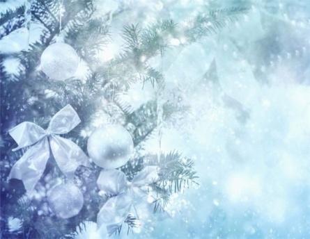C:\Documents and Settings\Учитель\Рабочий стол\Открытое мероприятие\Новый год_фото\Копия 86c4b24380f3.jpg