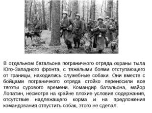В отдельном батальоне пограничного отряда охраны тыла Юго-Западного фронта, с