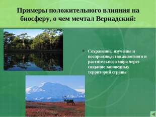 Примеры положительного влияния на биосферу, о чем мечтал Вернадский: Сохранен