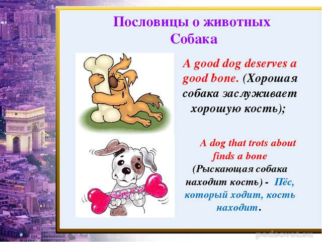 A good dog deserves a good bone. (Хорошая собака заслуживает хорошую кость);...