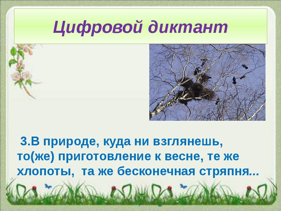 Цифровой диктант 3.В природе, куда ни взглянешь, то(же) приготовление к весне...