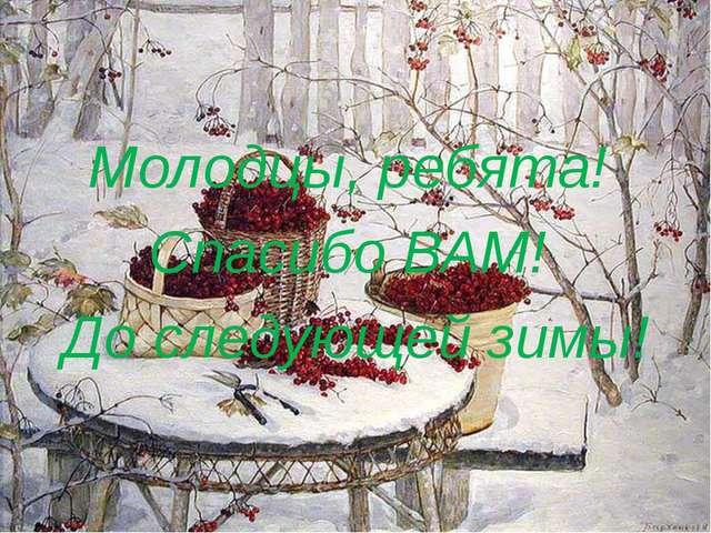 Молодцы, ребята! Спасибо ВАМ! До следующей зимы!
