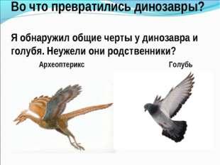 Во что превратились динозавры? Я обнаружил общие черты у динозавра и голубя.