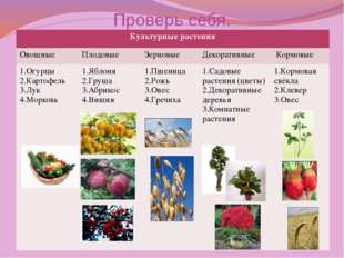 Проверь себя. Культурные растения Овощные Плодовые Зерновые Декоративные Корм