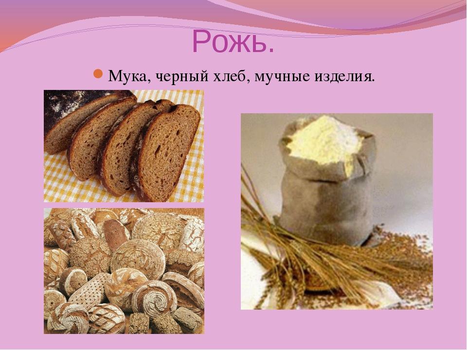 Рожь. Мука, черный хлеб, мучные изделия.