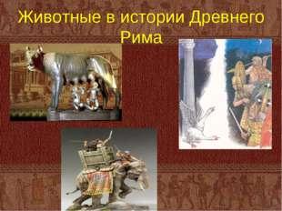 Животные в истории Древнего Рима