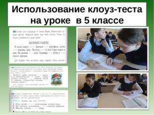 Использование клоуз-теста на уроке в 5 классе
