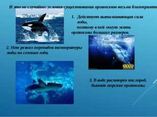 3. В воде растворен кислород, дышат морские организмы. И это не случайно: усл