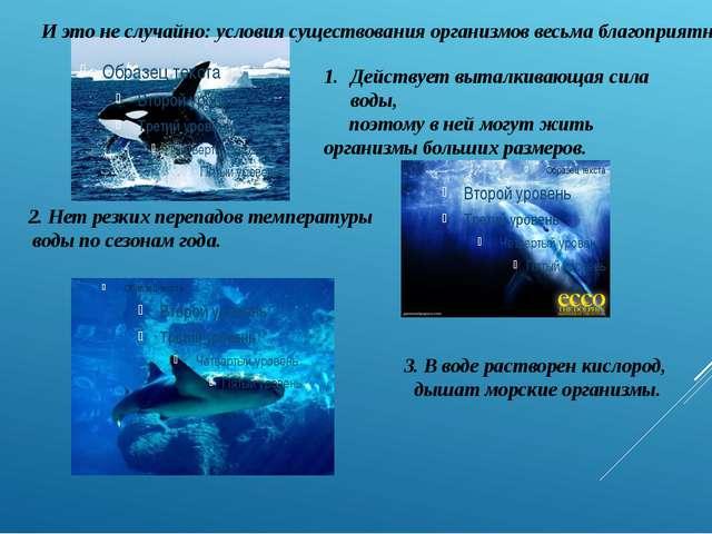3. В воде растворен кислород, дышат морские организмы. И это не случайно: усл...