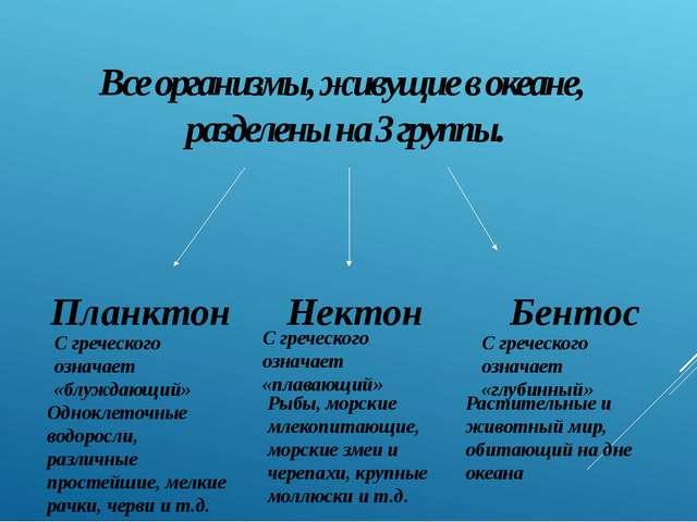 Все организмы, живущие в океане, разделены на 3 группы. Нектон Планктон Бенто...