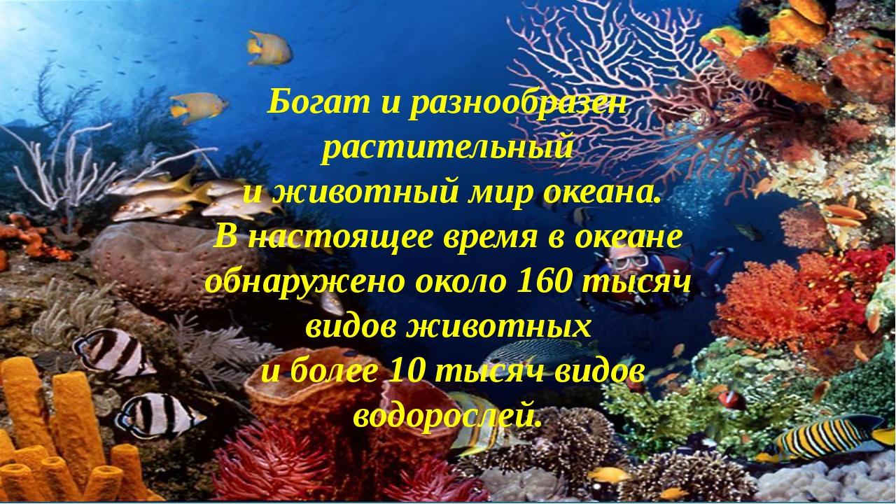 Богат и разнообразен растительный и животный мир океана. В настоящее время в...