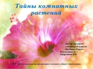 Тайны комнатных растений Автор проекта ученица 6 класса Любина Ольга. Руковод