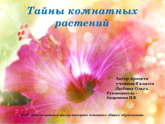 Тайны комнатных растений Автор проекта ученица 6 класса Любина Ольга. Руковод...
