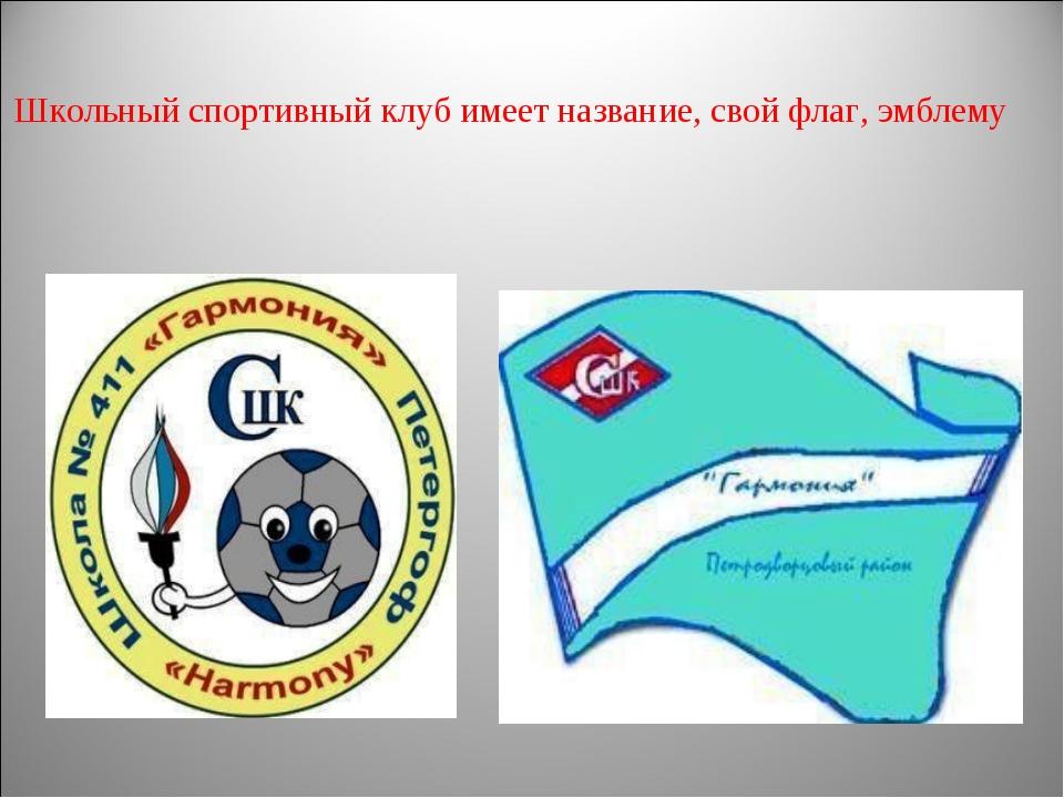Школьный спортивный клуб имеет название, свой флаг, эмблему