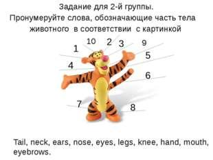 Задание для 2-й группы. Пронумеруйте слова, обозначающие часть тела животног