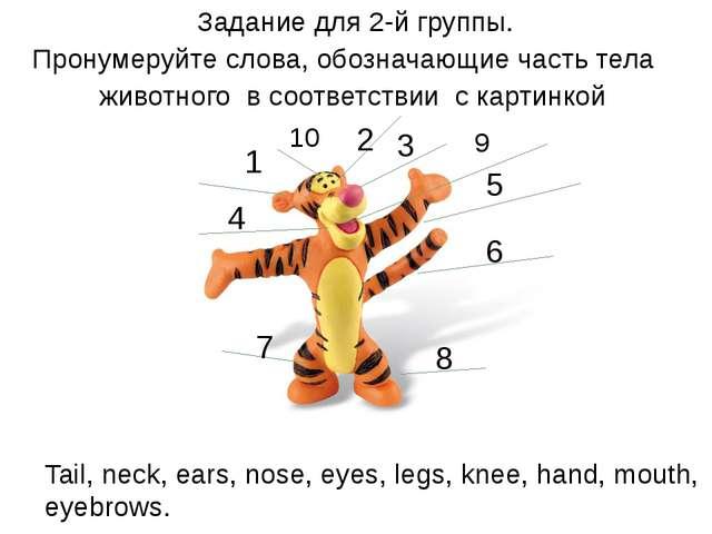 Задание для 2-й группы. Пронумеруйте слова, обозначающие часть тела животног...