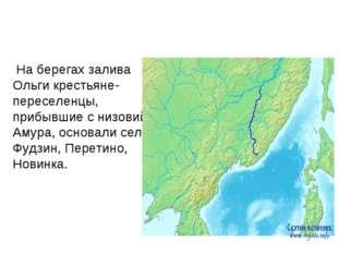 На берегах залива Ольги крестьяне-переселенцы, прибывшие с низовий Амура, ос