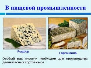 В пищевой промышленности Особый вид плесени необходим для производства делика