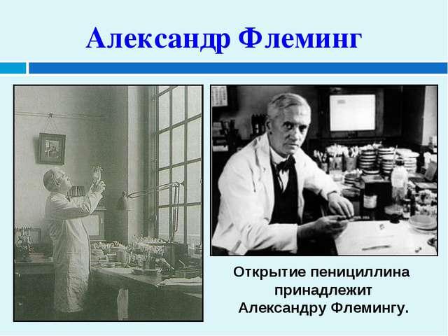 Открытие пенициллина принадлежит Александру Флемингу. Александр Флеминг