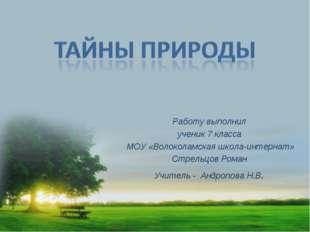Работу выполнил ученик 7 класса МОУ «Волоколамская школа-интернат» Стрельцов