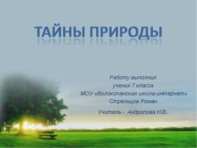 Работу выполнил ученик 7 класса МОУ «Волоколамская школа-интернат» Стрельцов...