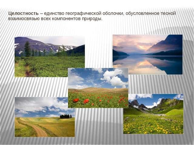 Целостность – единство географической оболочки, обусловленное тесной взаимосв...