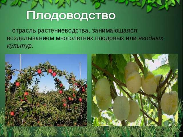 – отрасль растениеводства, занимающаяся: возделыванием многолетних плодовых и...