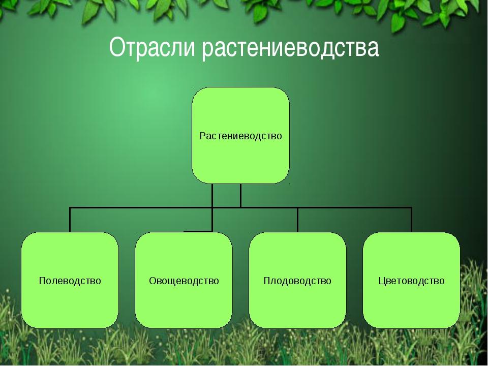 Отрасли растениеводства Free template from www.brainybetty.com
