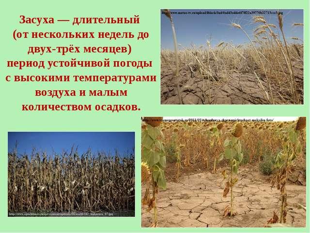Засуха— длительный (от нескольких недель до двух-трёх месяцев) период устойч...