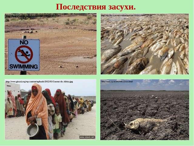 Последствия засухи.