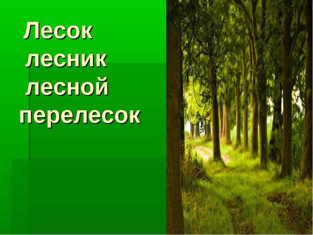 Лесок лесник лесной перелесок