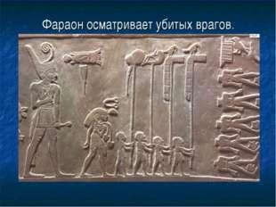 Фараон осматривает убитых врагов.