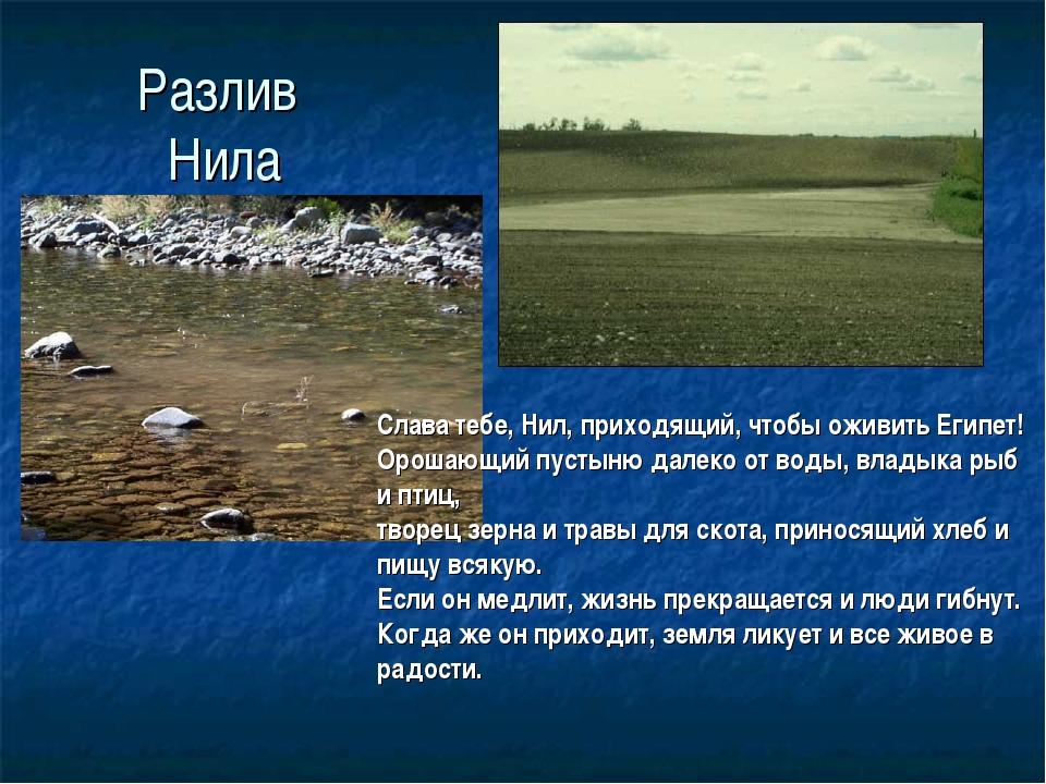 Разлив Нила Слава тебе, Нил, приходящий, чтобы оживить Египет! Орошающий пуст...
