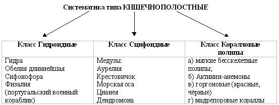 http://festival.1september.ru/articles/519302/img4.jpg