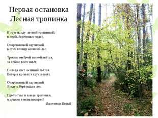 Первая остановка Лесная тропинка В грусть иду лесной тропинкой, в глубь берёз